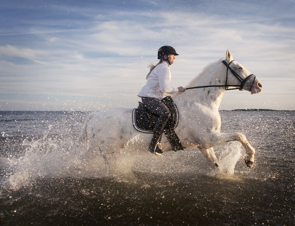 lifestyle image ponytailed rider on horseback galloping through waves
