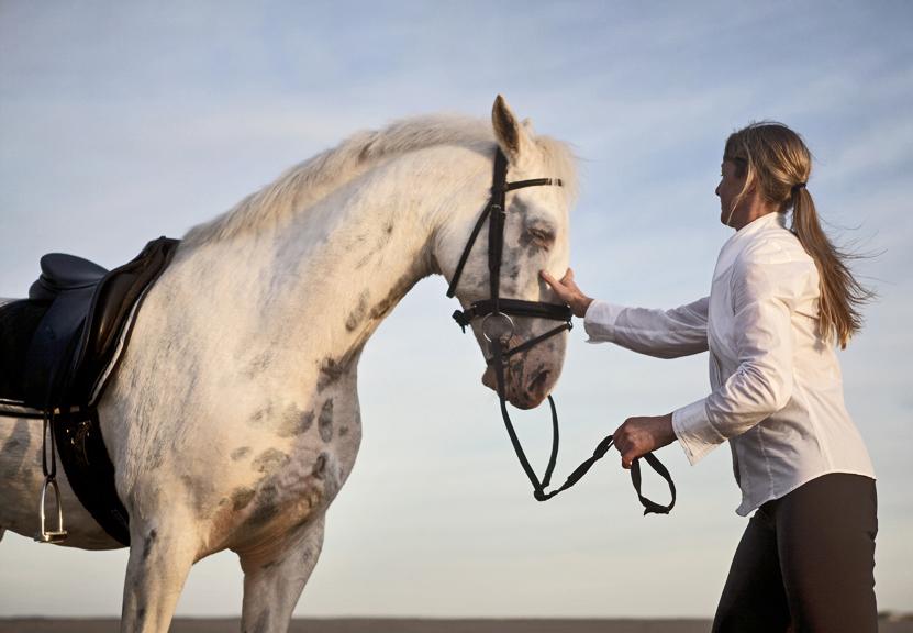 lifestyle image ponytailed rider petting horse on beach