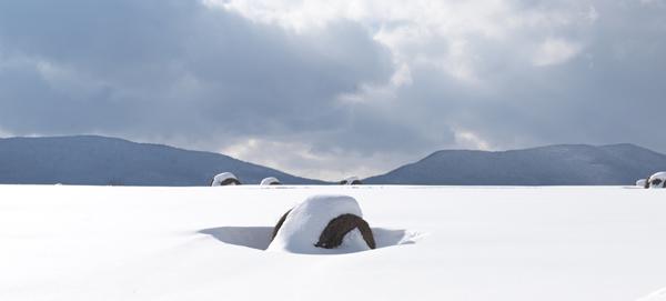 Test_2015-03-09_Vermont/Heath_Robbins/Test